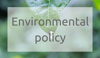 A copy of The Bridge Group Environmental policy