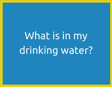 What is in my drinking water?