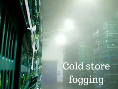 ESOL fogging in cold store