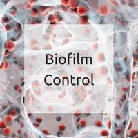 Biofilm control -what is biofilm?