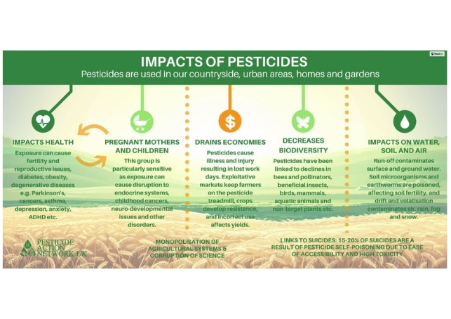 Impact of pesticides on humans and the environment