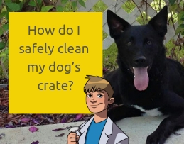 How do I safely clean my dog's crate