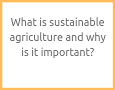 What is sustainable agriculture and why is it important?