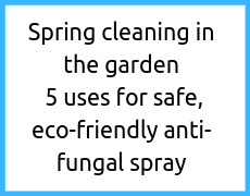 Spring cleaning in the garden: 5 uses for safe, eco-friendly anti-fungal spray