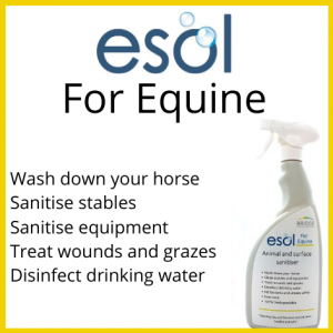 ESOL for Equine